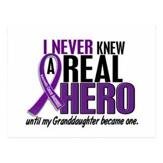 Pancreatic Cancer NEVER KNEW HERO 2 Granddaughter Postcard