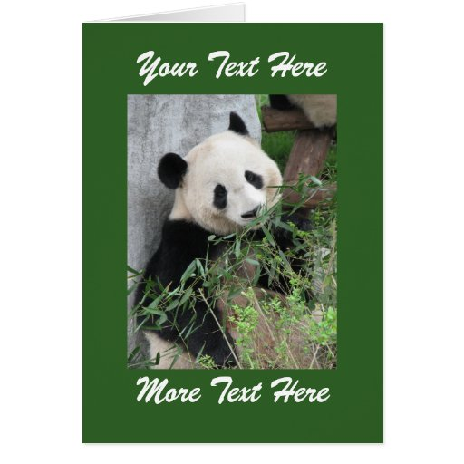 Panda  Add Your Own Text Blank Inside All Occasion Cards