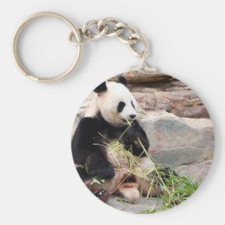 Panda bear at zoo keychain