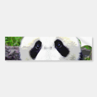 Panda Bear Bumper Sticker