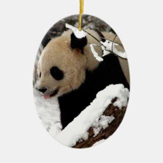 Panda Bear Ceramic Oval Decoration