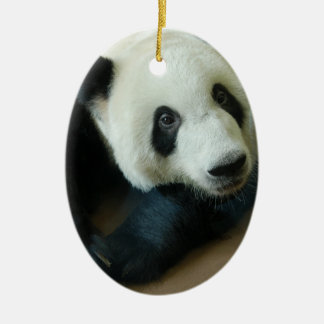 Panda Bear Christmas Ornaments