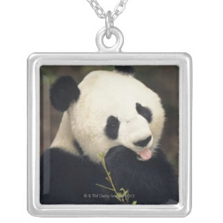 Panda bear, (Close-up) Silver Plated Necklace