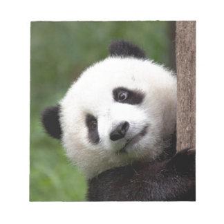 Panda Bear Cub Notepad