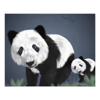 panda bear cute cuddly animal black white sweet 11.5 cm x 14 cm flyer