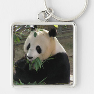 Panda Bear Hugs Key Chains
