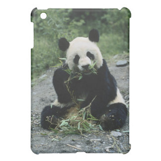 Panda Bear iPad Mini Cover