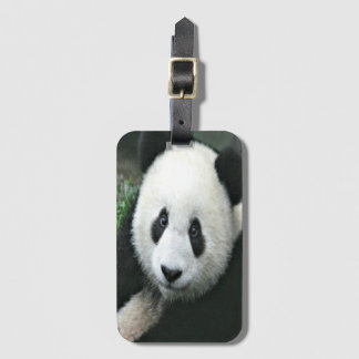 Panda Bear Luggage Tag