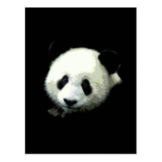 Panda Bear Postcard