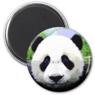 Panda Bear Refrigerator Magnets