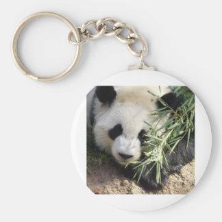 Panda Bear @ Zoo Atlanta Key Ring