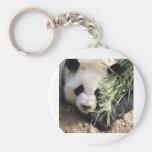 Panda Bear @ Zoo Atlanta Keychains