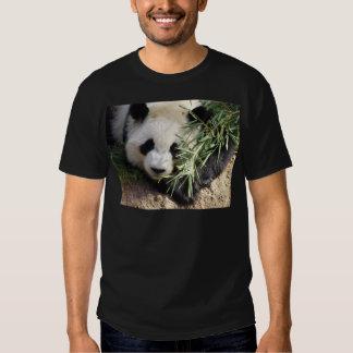 Panda Bear @ Zoo Atlanta Shirts