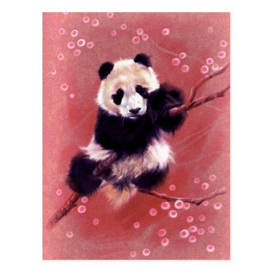 Panda Blossom Postcard