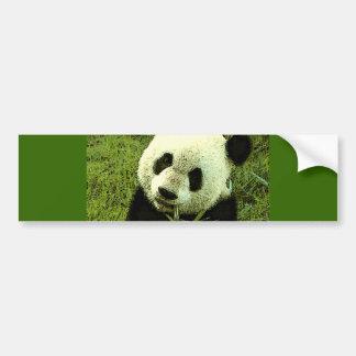 Panda Bumper Stickers