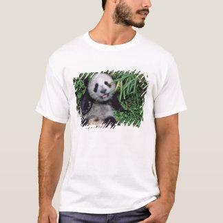 Panda cub in the bamboo grove, Wolong, T-Shirt