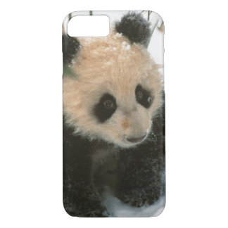 Panda cub on snow, Wolong, Sichuan, China 2 iPhone 8/7 Case
