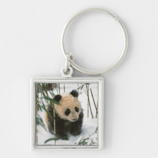 Panda cub on snow, Wolong, Sichuan, China 2 Silver-Colored Square Key Ring