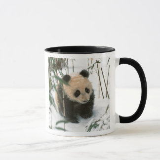 Panda cub on snow, Wolong, Sichuan, China 2 Mug