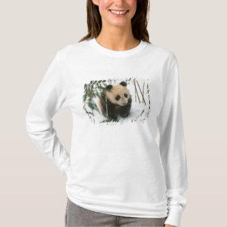 Panda cub on snow, Wolong, Sichuan, China 2 T-Shirt