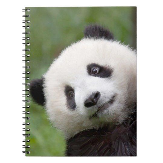 Panda cub painting notebooks