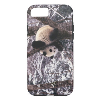 Panda cub playing on tree covered with snow, iPhone 7 case
