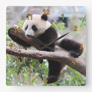 Panda Cub Wall Clocks
