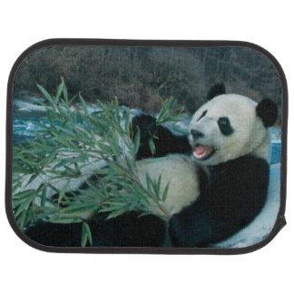 Panda eating bamboo by river bank, Wolong, 2 Car Mat