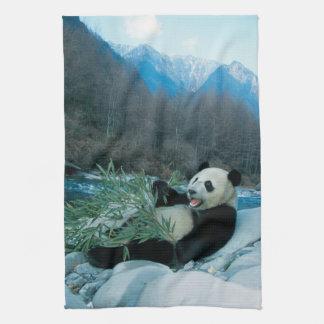 Panda eating bamboo by river bank, Wolong, 2 Tea Towel