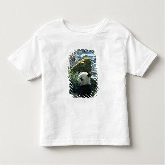 Panda eating bamboo by river bank, Wolong, 3 Toddler T-Shirt