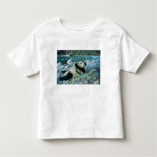 Panda eating bamboo by river bank, Wolong, Toddler T-Shirt