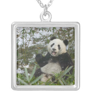 Panda eating bamboo on snow, Wolong, Sichuan, 2 Silver Plated Necklace