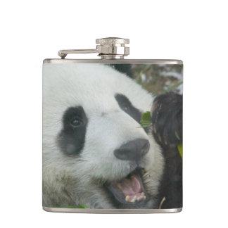 Panda eating bamboo on snow, Wolong, Sichuan, Flasks