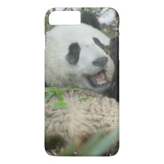 Panda eating bamboo on snow, Wolong, Sichuan, iPhone 8 Plus/7 Plus Case