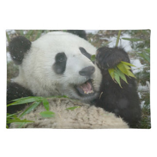 Panda eating bamboo on snow, Wolong, Sichuan, Placemat