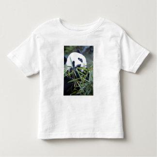 Panda eating bamboo shoots Alluropoda Toddler T-Shirt