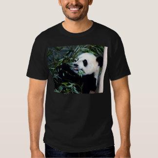 panda eating tee shirt