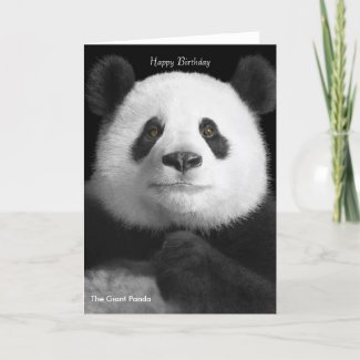 Panda image for birthday-greeting-card card