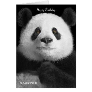 Panda image for birthday-greeting-card greeting card