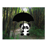 Panda in bamboo forest post card