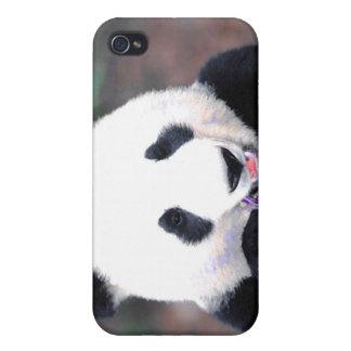 Panda iPhone 4/4S Cases