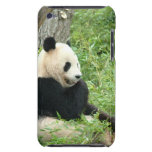 Panda  iTouch Case Barely There iPod Covers