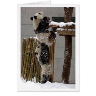 panda lift greeting card
