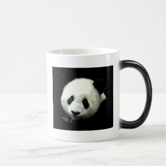 Panda Morphing Mug