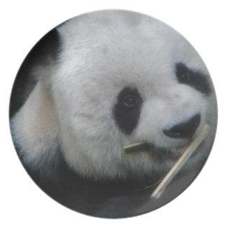 Panda Party Plate