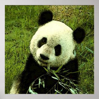 Panda Poster - Panda Posters Prints