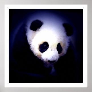 Panda Posters Prints - Panda Eyes Poster
