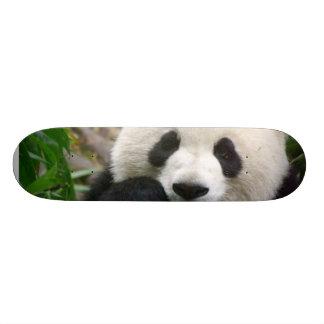 Panda Skateboard