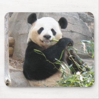 Panda Snack Mouse Mats