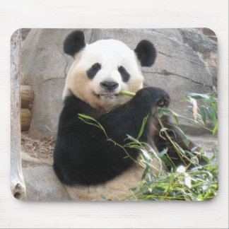 Panda Snack Mouse Pad